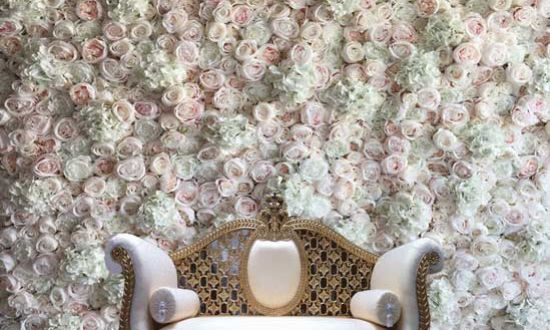 Blush Pink Rose with Hydrangea Flower Wall
